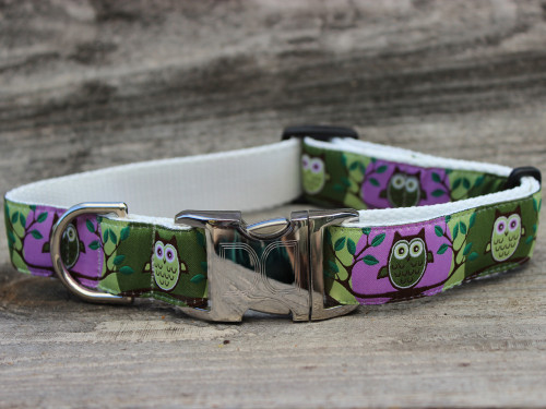 H'Owl Dog Collar - by Diva-Dog.com in Grape & Avocado color combo.