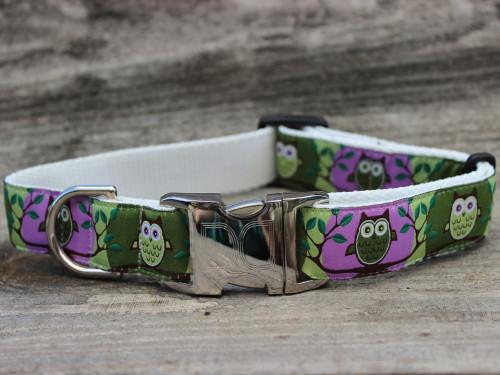 H'Owl Dog Collar - by Diva-Dog.com in Grape & Avocado color combo.