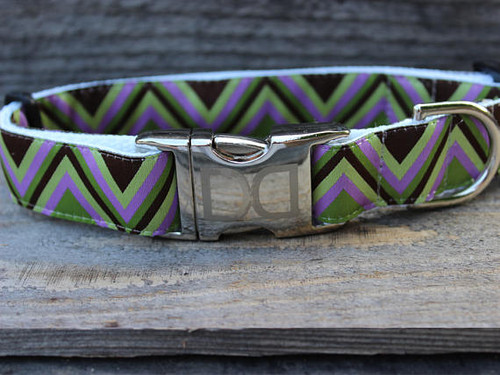 Mod Purple dog Collar - by Diva-Dog.com