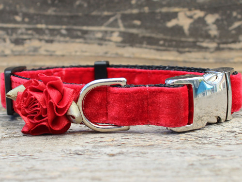 Mistletoe holly red collar by www.diva-dog.com