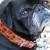 Bombay Dog Collar - by Diva-Dog.com
