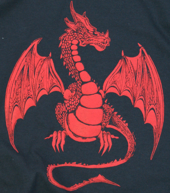 Celtic Red Dragon T-Shirt