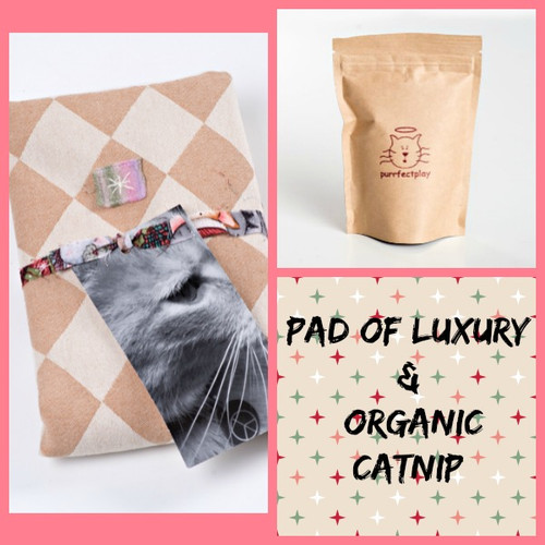 Holiday gift bag for cats.  Contains catnip pad and extra organic catnip.  Made in the USA.  Purrfectplay.com