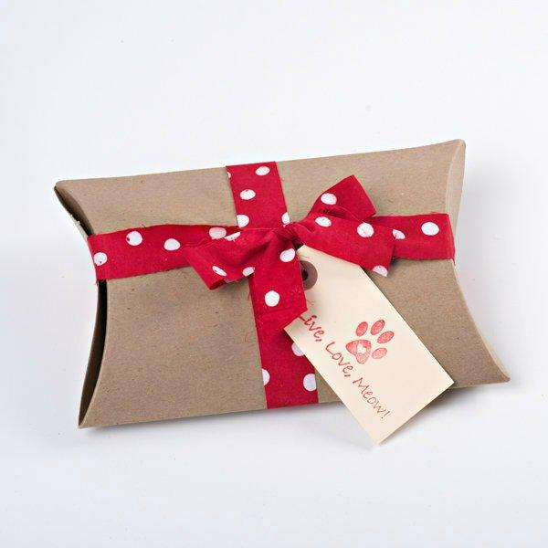 valentine-cat-medbox.jpg