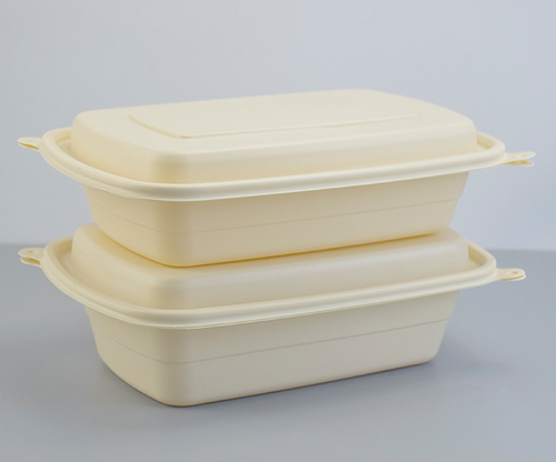 BEIGE DISPOSABLE BIODEGRADABLE RECTANGLE LUNCH BOX (BDB 5) LID/ COMPARTMENT