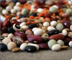 drnatura-fiber-facts-beans-1-.png