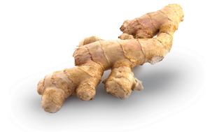drnatura-herbal-cleanse-ginger-1-.png