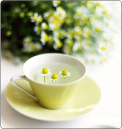drnatura-herbs-chamomile-tea-1-.png