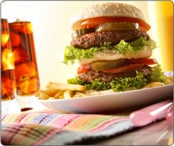 drnatura-standard-diet-1-.png