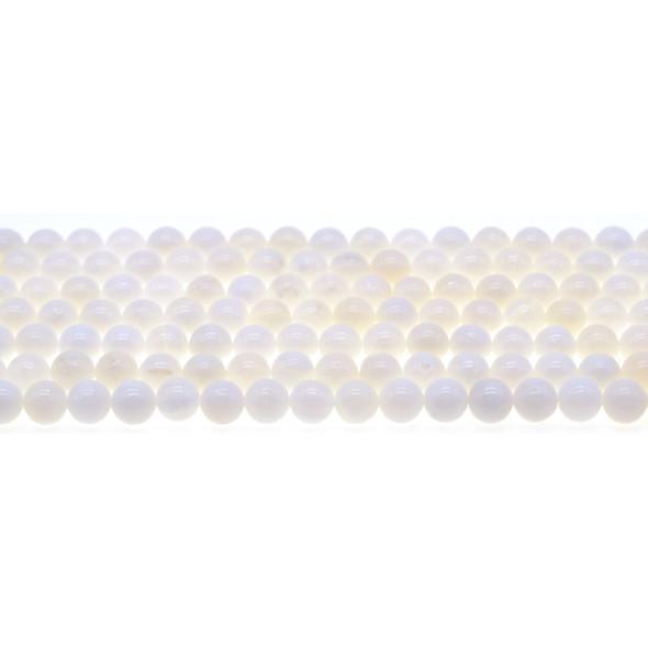 White Tridacna Shell Round 6mm - Loose Beads