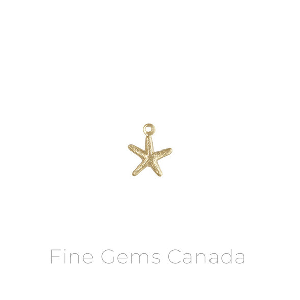14K Gold Filled - Starfish (8.0mm) - 10/Pack