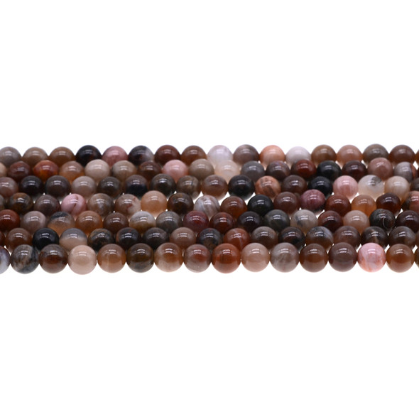 Brown Petrified Wood Round 6mm - Loose Beads
