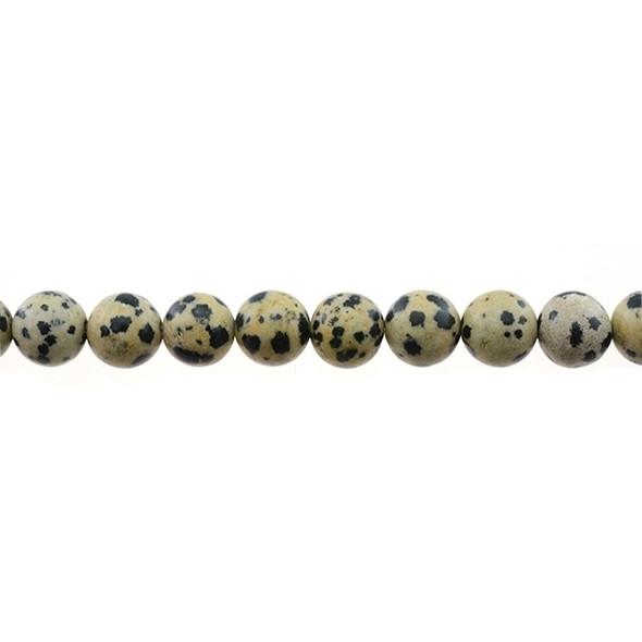 Dalmatian Jasper Round 10mm - Loose Beads