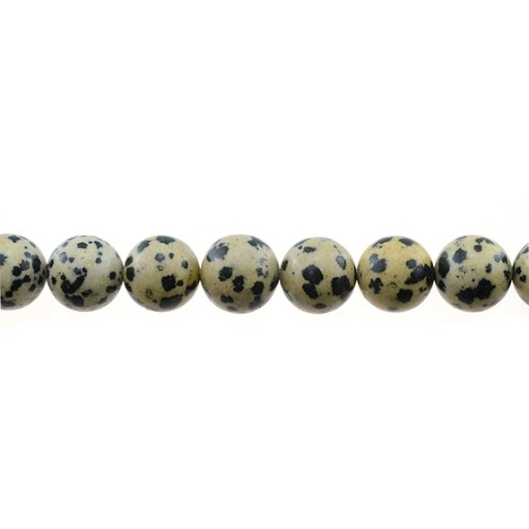 Dalmatian Jasper Round 12mm - Loose Beads