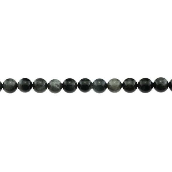 Eagle Eye Round 8mm - Loose Beads