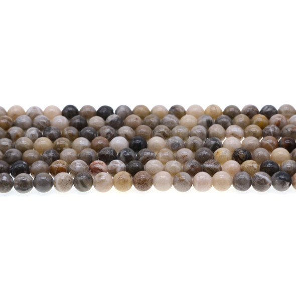 Fossil Coral Round 6mm - Loose Beads