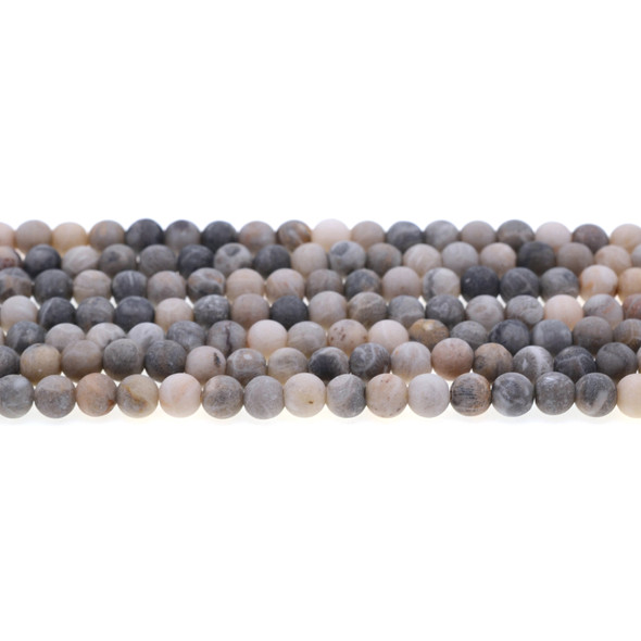 Fossil Coral Round Frosted 6mm - Loose Beads