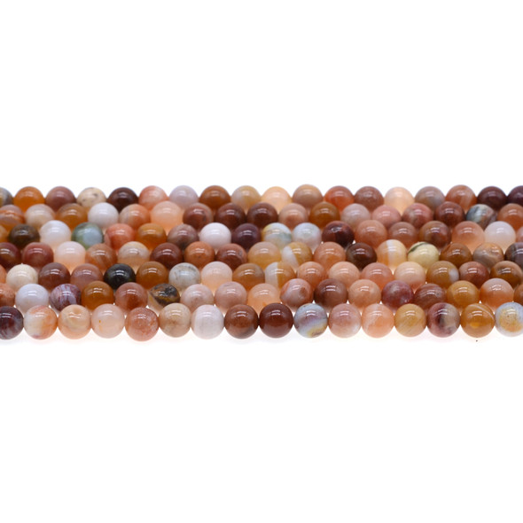 Petrified Fossil Wood Agate Round 6mm - Loose Beads