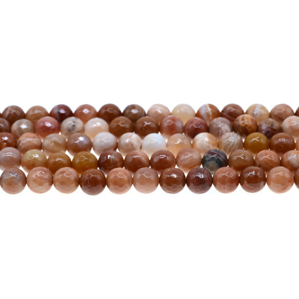 Petrified Fossil Wood Agate Round Faceted 8mm - Loose Beads
