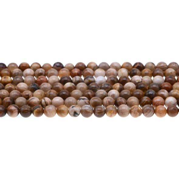 Petrified Wood Jasper Round 6mm - Loose Beads