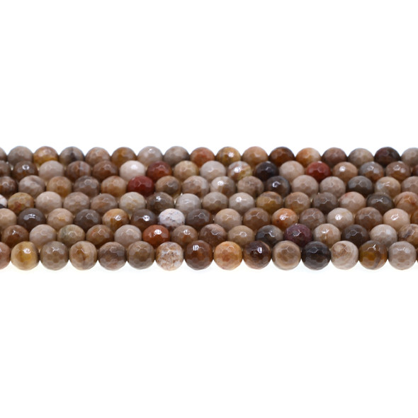 Petrified Wood Jasper Round Faceted 6mm - Loose Beads
