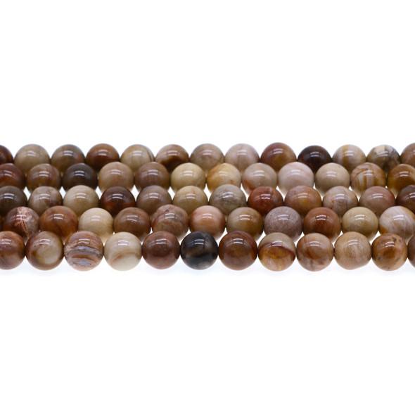 Petrified Wood Jasper Round 8mm - Loose Beads