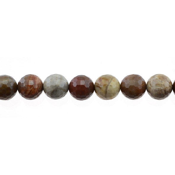 Petrified Wood Jasper Round Faceted 12mm - Loose Beads