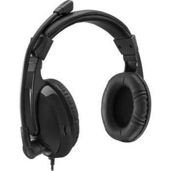 Multimedia Headset w Mic