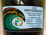 Phytoplankton Live Saltwater Phyto Culture Copepods Food Fish Food Reef Tank Aquarium