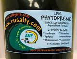 Phytoplankton Live Saltwater Phyto Culture Copepods Food Fish Food Reef Tank Aquarium