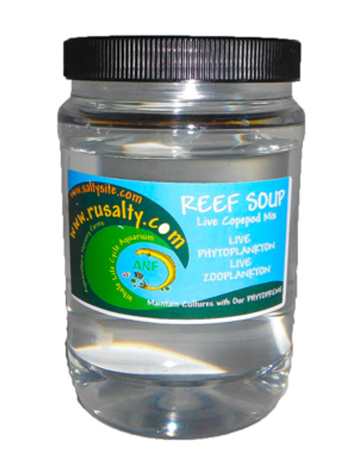 Buy copepods Live Pods Reef Soup Blend of 6 Copepods Live Fish Food Aquarium Tank Coral Food