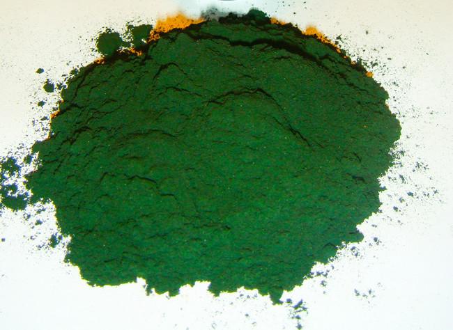 Spirulina algae powder Bulk