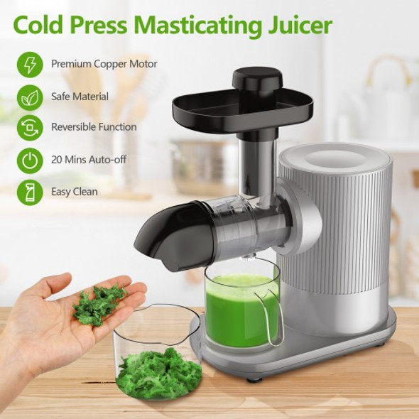 Horizontal Slow Masticating Extractor Juicer with Brush-Silver