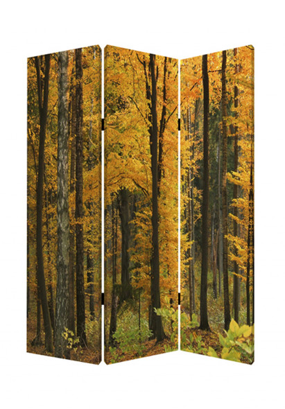 "1"" x 48"" x 72"" Multi Color Wood Canvas Autumn Journey Screen"