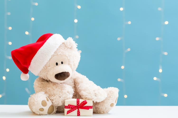 5 Quick Tips for your Santa Shop...