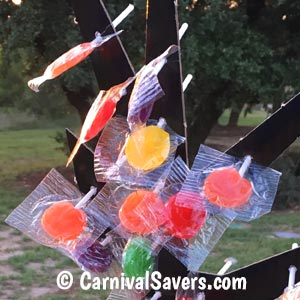 closeup-spooky-lollipop-tree.jpg