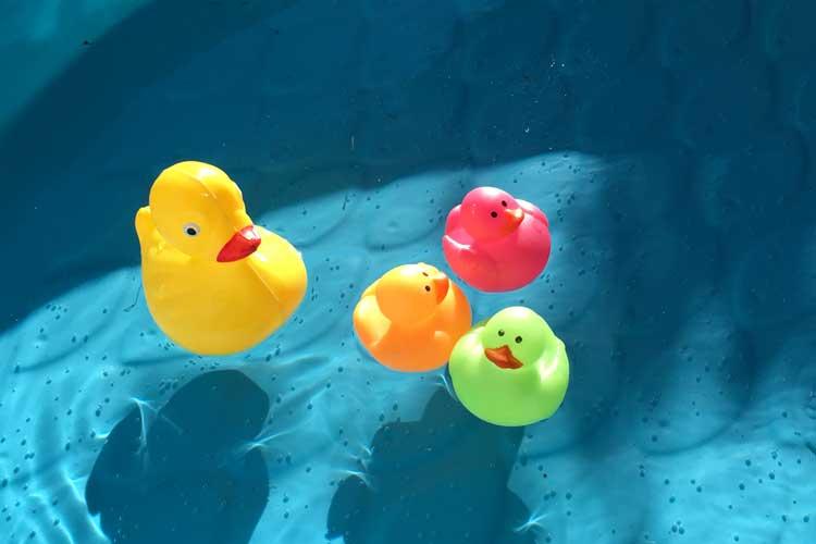 one-matching-duck-shown-with-3-neon-ducks.jpg