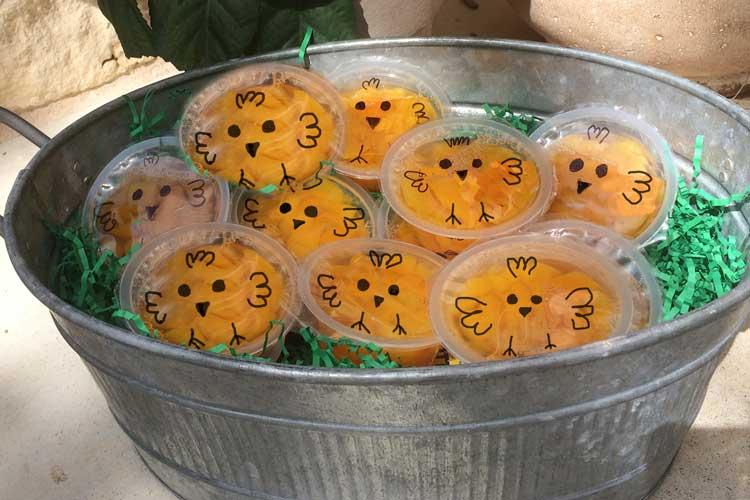 peachy-chicks-snack-food.jpg