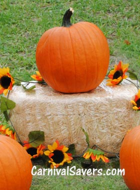 pumpkin-ring-toss-fav.jpg