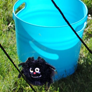 toy-spider-used-for-game.jpg