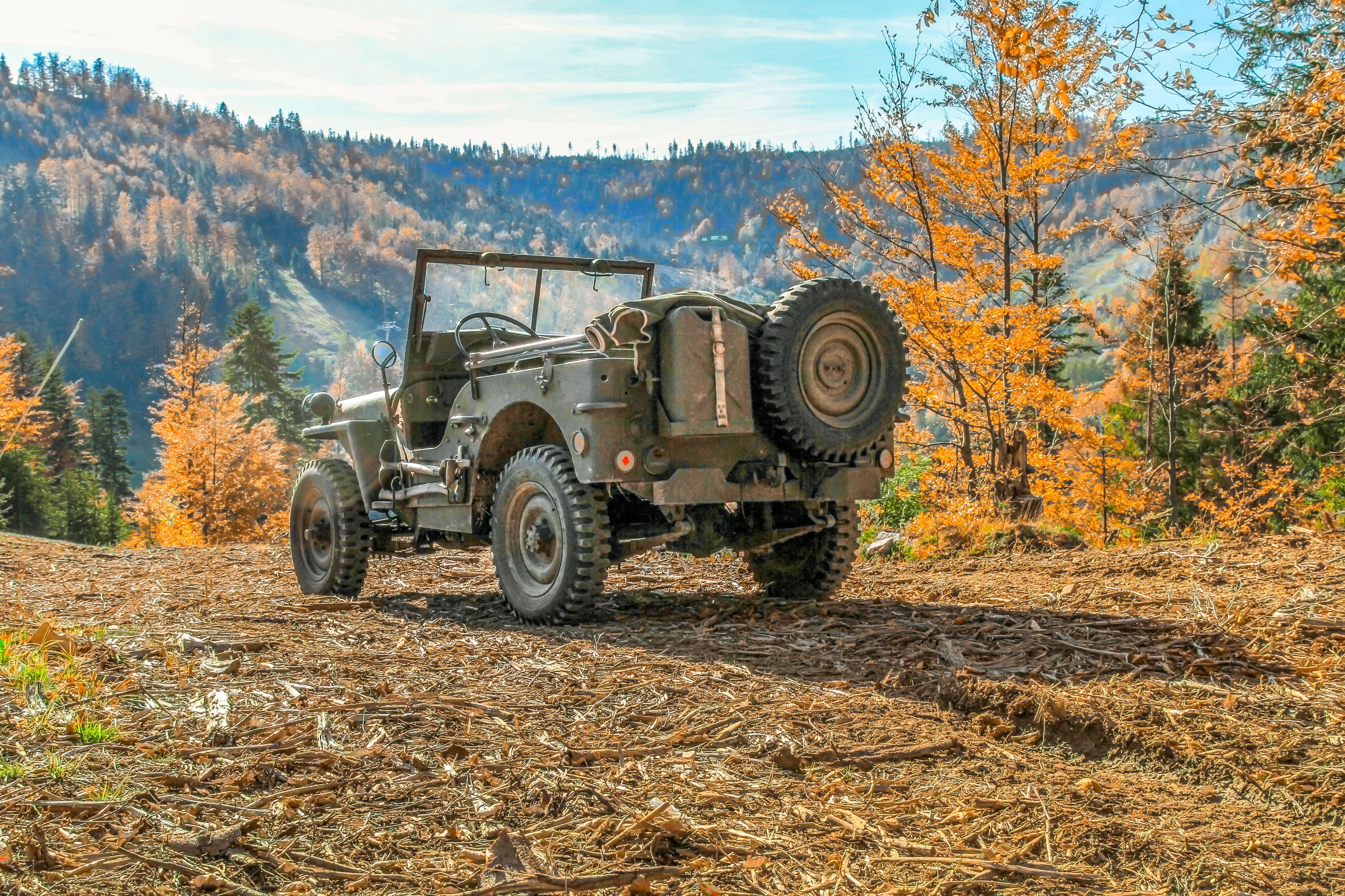 Classic Willys-Overland Jeep: The Built for Anything Classic Quad
