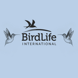 Our exclusive collection with Charity BirdLife International