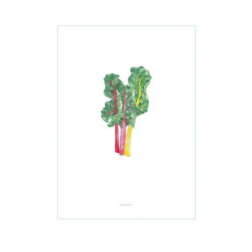 Bard With His Chard A3 Print - Home Grown Collection