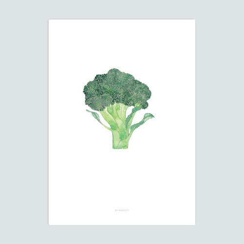 Home Grown Collection A3 Print - Broc On
