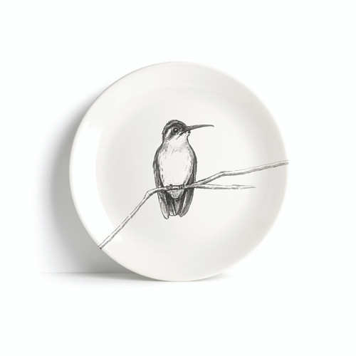 The BirdLife Collection: Hook-billed Hermit Hummingbird On A Branch - Plate