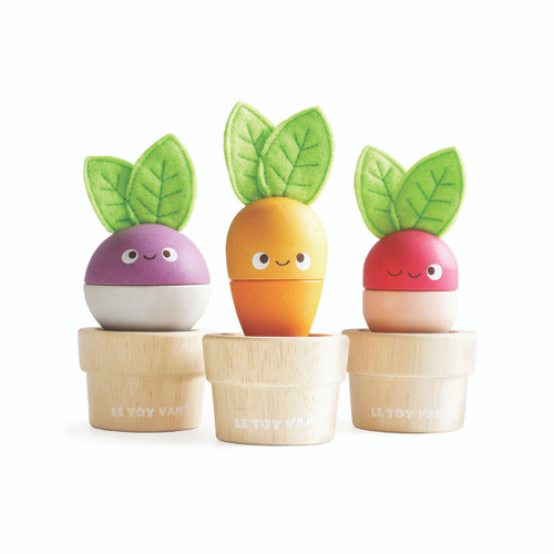 sustainable wooden toy