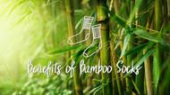 Top 7 Benefits of Wearing Bamboo Socks