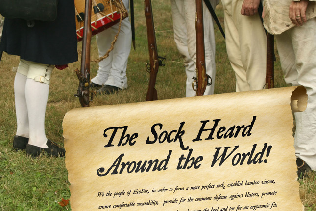 Revolutionary Socks