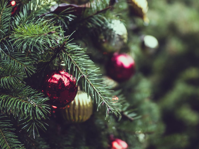 Eco-friendly Ways to Spruce Up Your Home for the Holidays