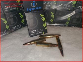 223 Brass Igman 1,000 Rounds Ammunition